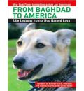 From Baghdad to America by Jay Kopelman AudioBook CD